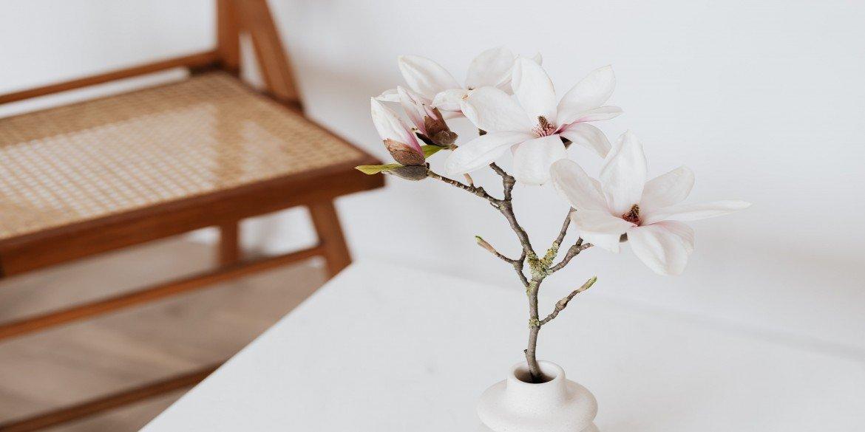 ¿Cómo decorar tu casa en primavera?